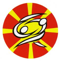 Џудо Федерација на Македонија